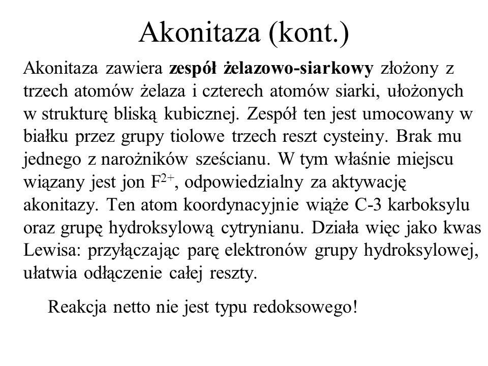 Akonitaza (kont.) Akonitaza zawiera zespół żelazowo-siarkowy złożony z trzech atomów żelaza i czterech atomów siarki, ułożonych w strukturę bliską kubicznej.