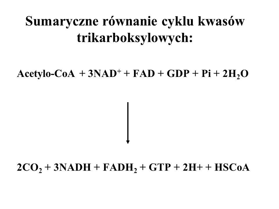 Sumaryczne równanie cyklu kwasów trikarboksylowych: Acetylo-CoA + 3NAD + + FAD + GDP + Pi + 2H 2 O 2CO 2 + 3NADH + FADH 2 + GTP + 2H+ + HSCoA