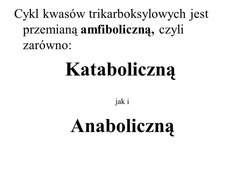 Cykl kwasów trikarboksylowych jest przemianą amfiboliczną, czyli zarówno: Kataboliczną jak i Anaboliczną