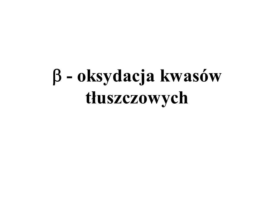 Nazwa przemiany: -oksydacja, pochodzi od nazwy trzeciego węgla w łańcuchu kwasu tłuszczowego.