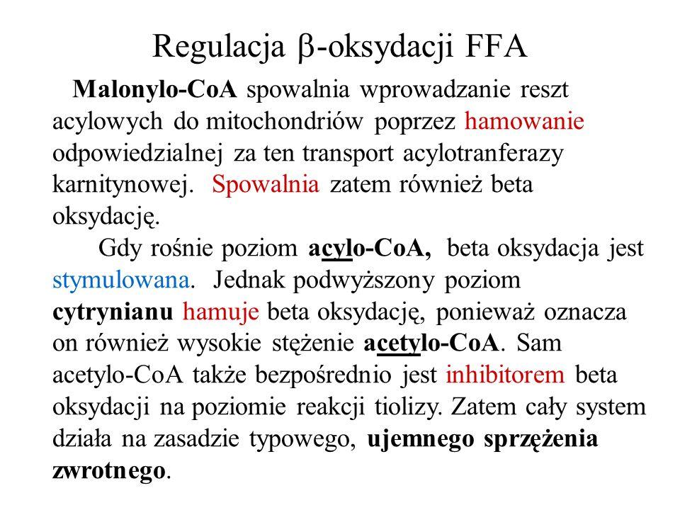 Regulacja -oksydacji FFA Malonylo-CoA spowalnia wprowadzanie reszt acylowych do mitochondriów poprzez hamowanie odpowiedzialnej za ten transport acylo
