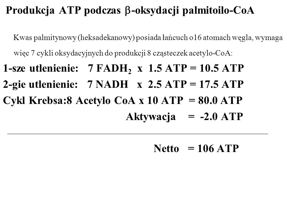 Produkcja ATP podczas -oksydacji palmitoilo-CoA Kwas palmitynowy (heksadekanowy) posiada łańcuch o16 atomach węgla, wymaga więc 7 cykli oksydacyjnych