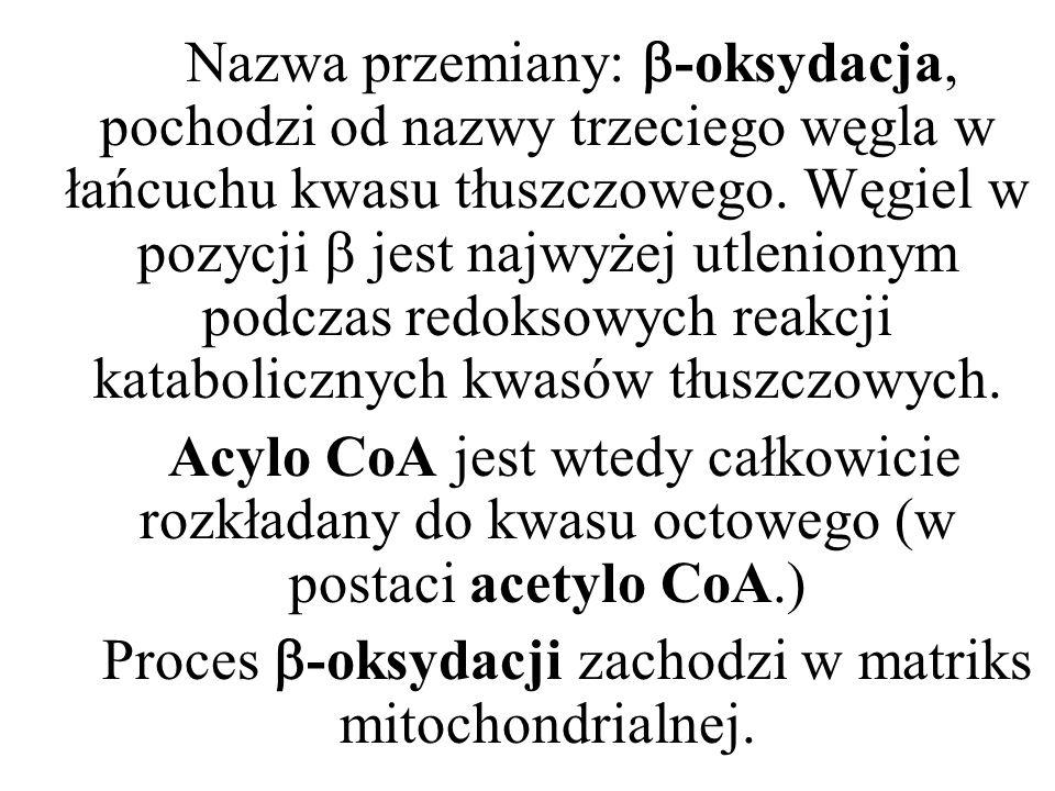 Nazwa przemiany: -oksydacja, pochodzi od nazwy trzeciego węgla w łańcuchu kwasu tłuszczowego. Węgiel w pozycji jest najwyżej utlenionym podczas redoks