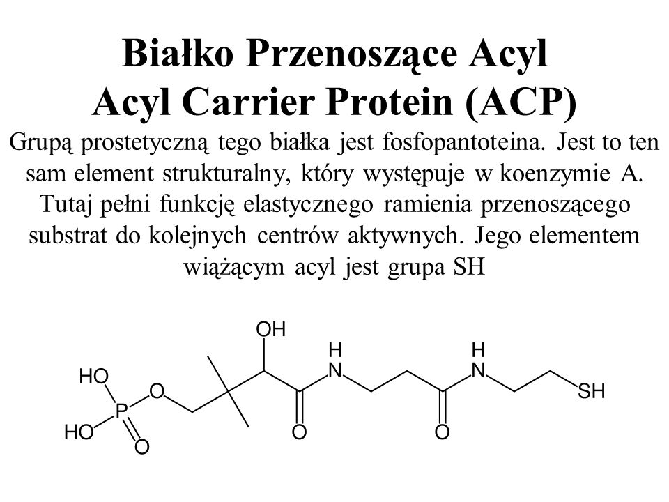 Białko Przenoszące Acyl Acyl Carrier Protein (ACP) Grupą prostetyczną tego białka jest fosfopantoteina. Jest to ten sam element strukturalny, który wy
