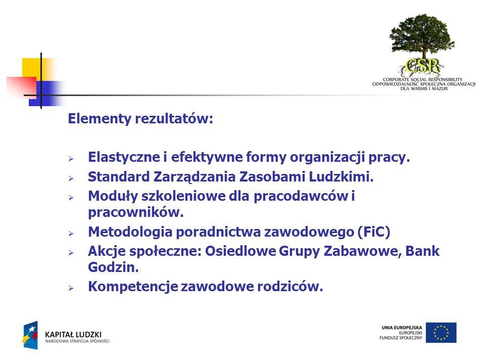 Kwestie do uwzględnienia podczas kampanii.: Prawo pracy – nowe zapisy Polityka równości w projektach unijnych Rozwiązania z innych krajów unijnych Stowarzyszenia i fundacje działające na rzecz równości Instytucje wspierające rozwój zawodowy kobiet Upowszechnienie idei CSR Wspieranie rozwiązań innowacyjnych w obszarze elastyczności i bezpieczeństwa zatrudnienia Szczęśliwa Rodzina i Sukces Zawodowy