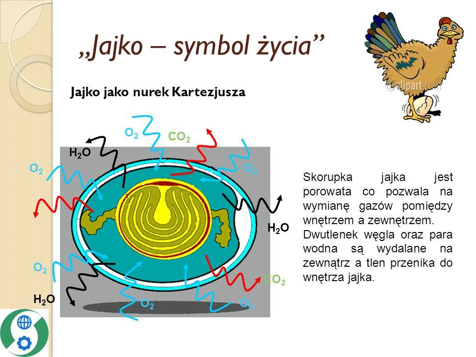 Jajko – symbol życia H2OH2O CO 2 H2OH2O O2O2 O2O2 O2O2 C O2O2 O2O2 O2O2 H2OH2O Jajko jako nurek Kartezjusza Skorupka jajka jest porowata co pozwala na wymianę gazów pomiędzy wnętrzem a zewnętrzem.