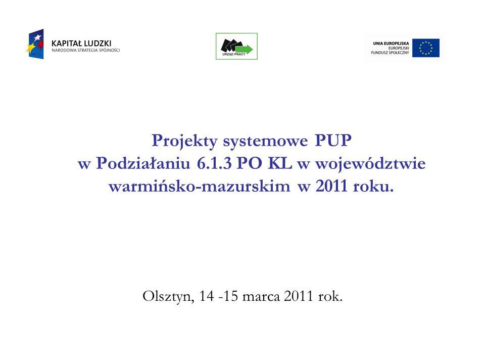 Projekty systemowe PUP w Podziałaniu 6.1.3 PO KL w województwie warmińsko-mazurskim w 2011 roku. Olsztyn, 14 -15 marca 2011 rok.