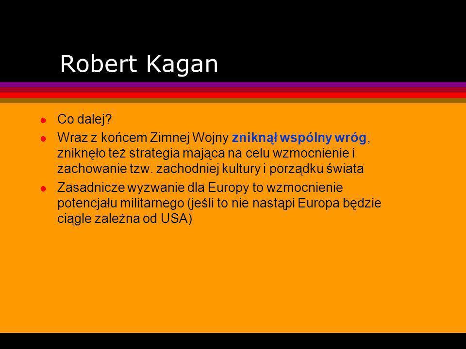 Timothy Garton Ash Ameryka i większość tak różnych od siebie krajów Europy należą do wielkiej rodziny rozwiniętych, liberalnych demokracji, Ameryka jest lepsza w jednych dziedzinach, Europa w innych