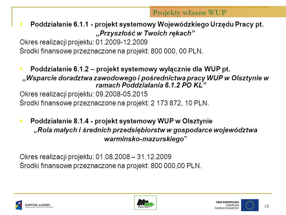 16 Poddziałanie 6.1.1 - projekt systemowy Wojewódzkiego Urzędu Pracy pt.,,Przyszłość w Twoich rękach Okres realizacji projektu: 01.2009-12.2009 Środki finansowe przeznaczone na projekt: 800 000, 00 PLN.