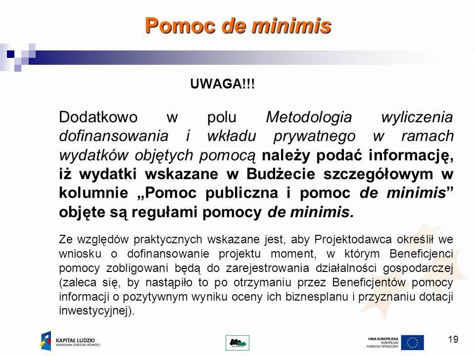19 Pomoc de minimis UWAGA!!! Dodatkowo w polu Metodologia wyliczenia dofinansowania i wkładu prywatnego w ramach wydatków objętych pomocą należy podać
