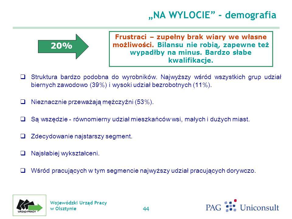 Wojewódzki Urząd Pracy w Olsztynie 44 NA WYLOCIE - demografia Struktura bardzo podobna do wyrobników.