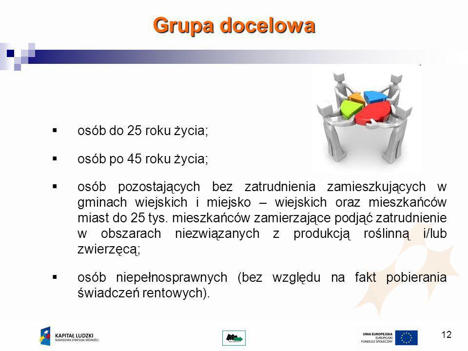 12 Grupa docelowa osób do 25 roku życia; osób po 45 roku życia; osób pozostających bez zatrudnienia zamieszkujących w gminach wiejskich i miejsko – wiejskich oraz mieszkańców miast do 25 tys.