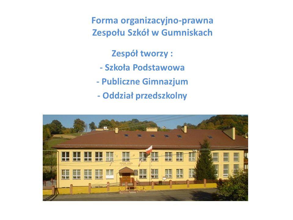 Infrastruktura Zespołu Szkół w Gumniskach składa się z: 11 oddziałów (6 w podstawówce, 3 w gimnazjum i 1 oddział przedszkolny 6-latków i 1 oddział 5-latków) 10 sal lekcyjnych (w tym dwie pracownie komputerowe) 1 świetlica 1 biblioteka z pracownią multimedialną 1 sala gimnastyczna 1 mała sala do ćwiczeń dla klas I-III 1 stołówka (otwarcie niebawem) Pełnowymiarowe boisko szkolne Szkoła jest monitorowana w czasie pozalekcyjnym przez firmę Omega