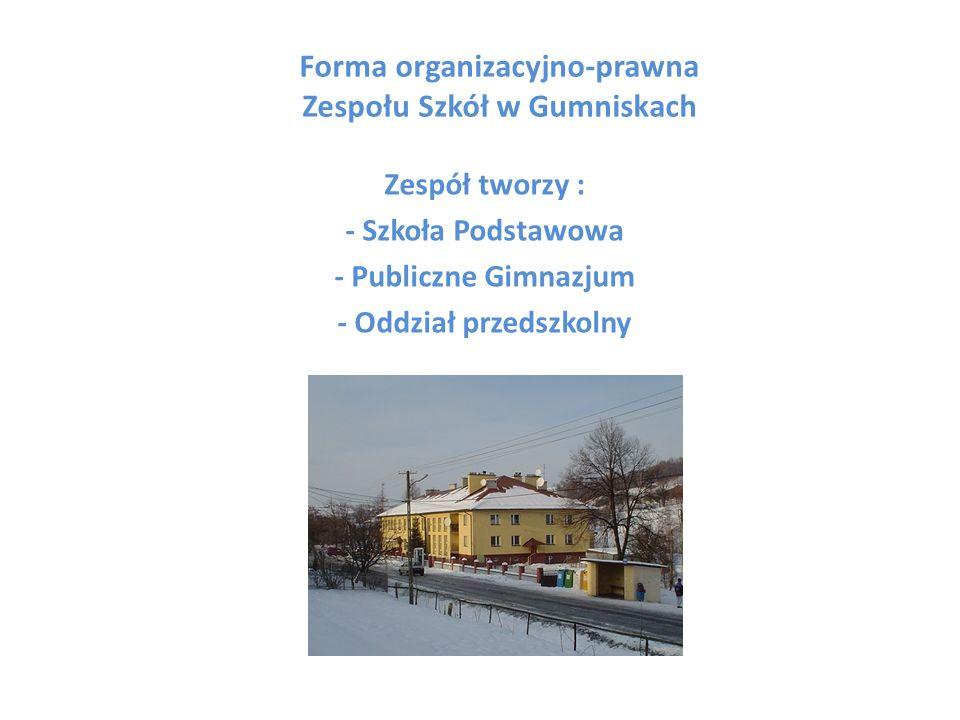 Infrastruktura Zespołu Szkół w Gumniskach składa się z: 10 oddziałów (6 w podstawówce, 3 w gimnazjum i 1 oddział przedszkolny 6-latków i 1 oddział 5-latków) 10 sal lekcyjnych (w tym dwie pracownie komputerowe) 1 świetlica 1 biblioteka z pracownią multimedialną 1 sala gimnastyczna 1 mała sala do ćwiczeń dla klas I-III 1 stołówka (otwarcie niebawem) Pełnowymiarowe boisko szkolne Szkoła jest monitorowana w czasie pozalekcyjnym przez firmę Błysk