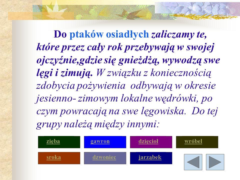 Sroka Zamieszkuje najchętniej tereny rolnicze z kępami drzew i krzewów.