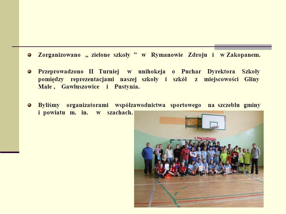 Zorganizowano zielone szkoły w Rymanowie Zdroju i w Zakopanem. Przeprowadzono II Turniej w unihokeja o Puchar Dyrektora Szkoły pomiędzy reprezentacjam