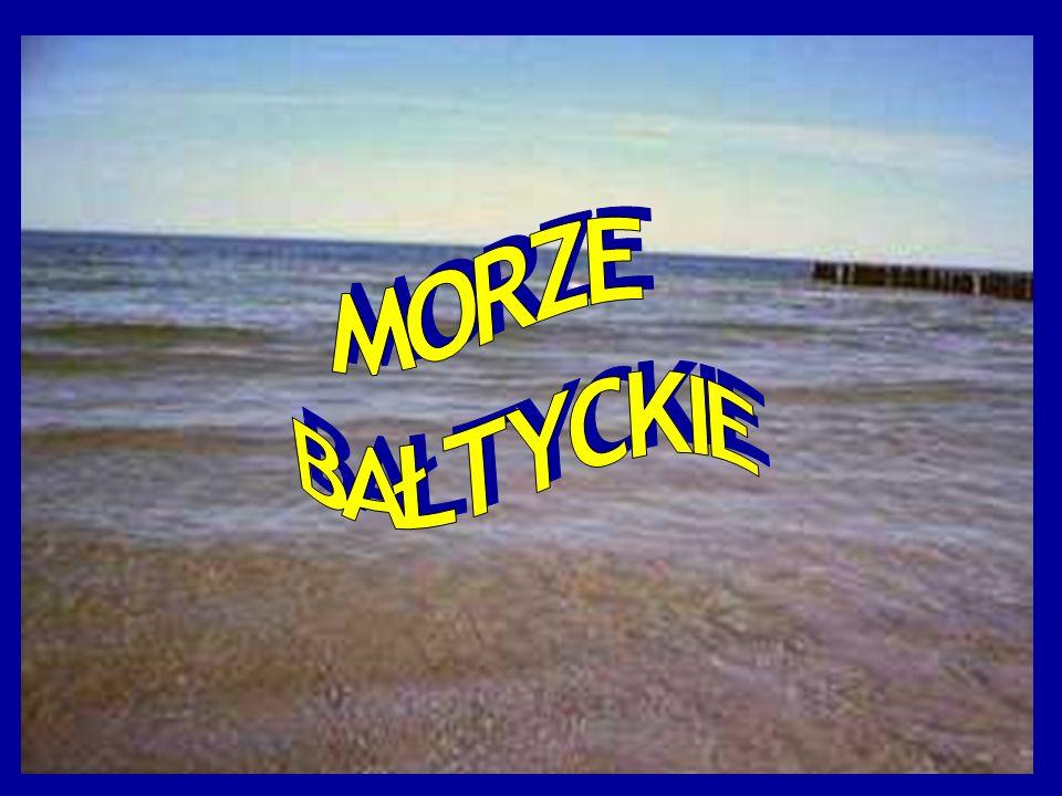 Nad brzegiem Morza Bałtyckiego