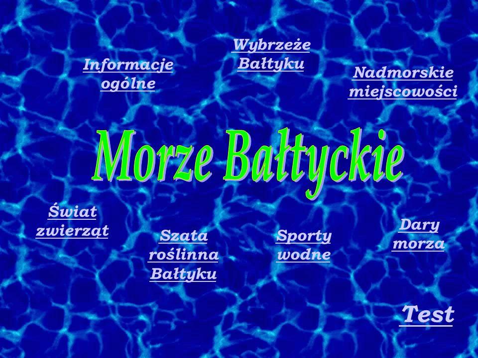 Informacje ogólne Szata roślinna Bałtyku Nadmorskie miejscowości Sporty wodne Wybrzeże Bałtyku Dary morza Świat zwierząt Test