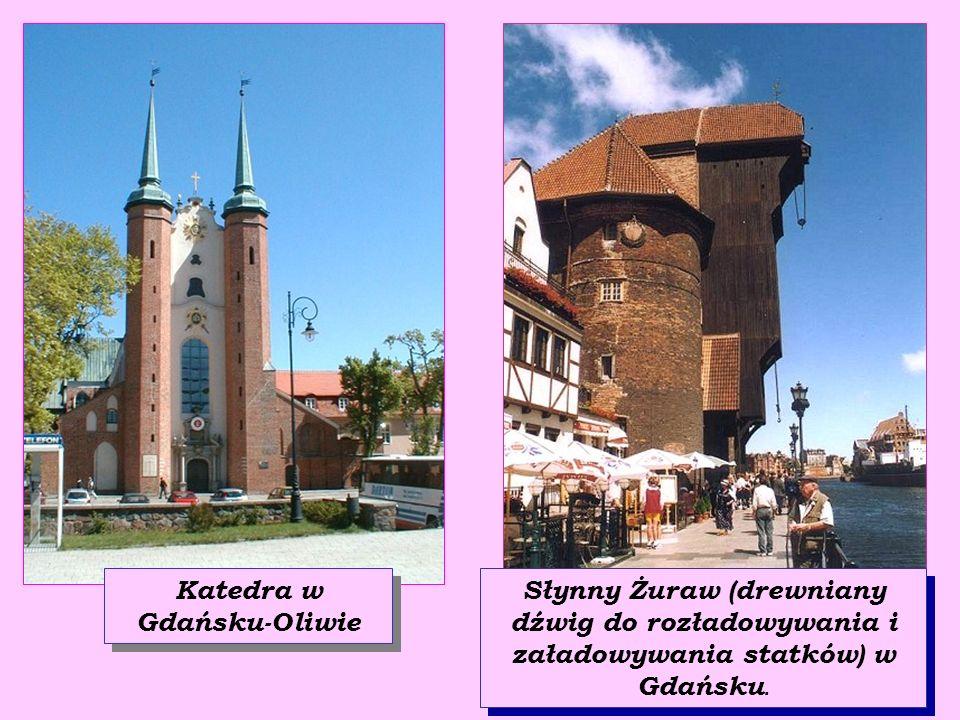 Trójmiasto słynie z wielu pięknych zabytków.Oto niektóre z nich: Pomnik Neptuna - króla mórz w Gdańsku Ulica Długi Targ i Ratusz w Gdańsku.