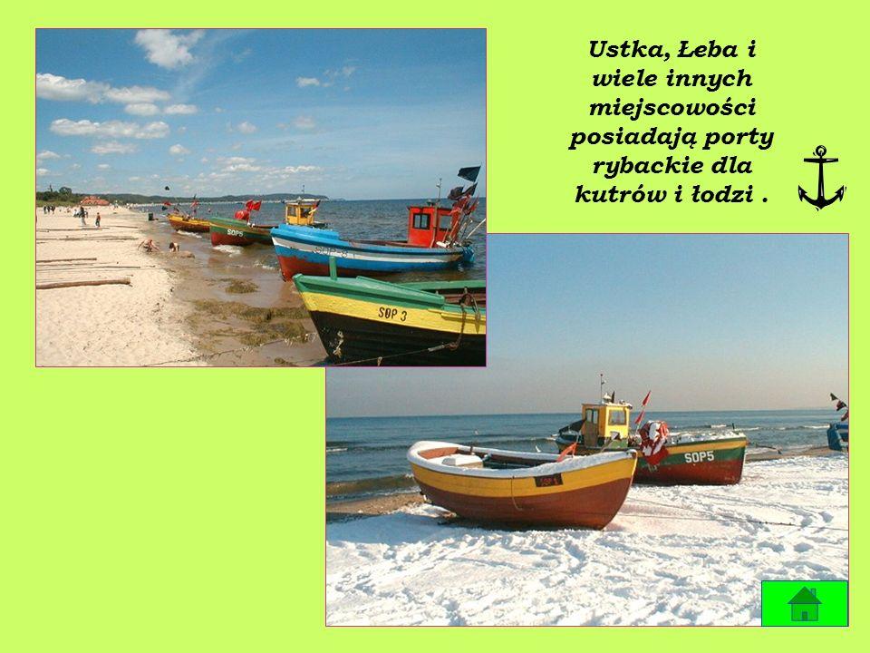 Gdańsk, Gdynia to miasta portowe do których zawijają statki z całego świata.