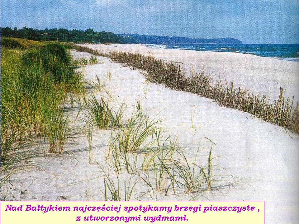 Nad Bałtykiem najczęściej spotykamy brzegi piaszczyste, z utworzonymi wydmami.