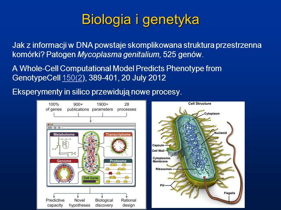 Biologia i genetyka Jak z informacji w DNA powstaje skomplikowana struktura przestrzenna komórki? Patogen Mycoplasma genitalium, 525 genów. A Whole-Ce