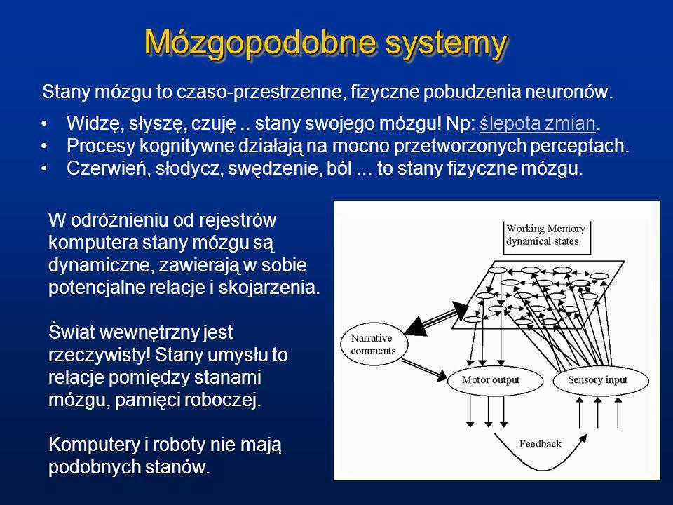 Mózgopodobne systemy Stany mózgu to czaso-przestrzenne, fizyczne pobudzenia neuronów. Widzę, słyszę, czuję.. stany swojego mózgu! Np: ślepota zmian.śl
