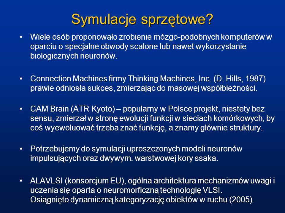 Symulacje sprzętowe? Wiele osób proponowało zrobienie mózgo-podobnych komputerów w oparciu o specjalne obwody scalone lub nawet wykorzystanie biologic