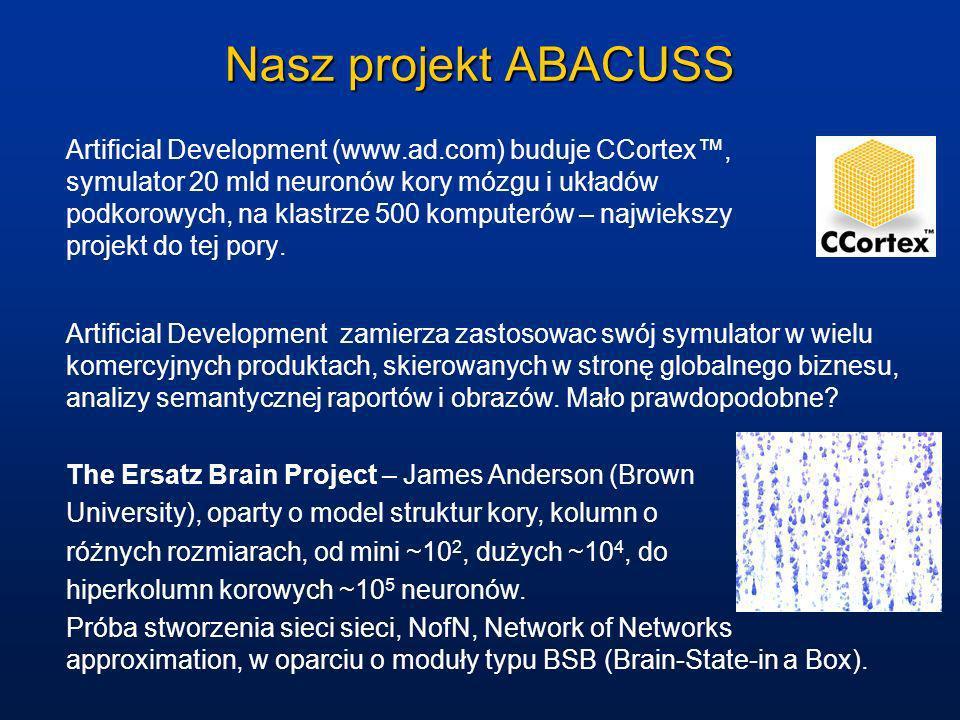 Nasz projekt ABACUSS Artificial Development (www.ad.com) buduje CCortex, symulator 20 mld neuronów kory mózgu i układów podkorowych, na klastrze 500 k