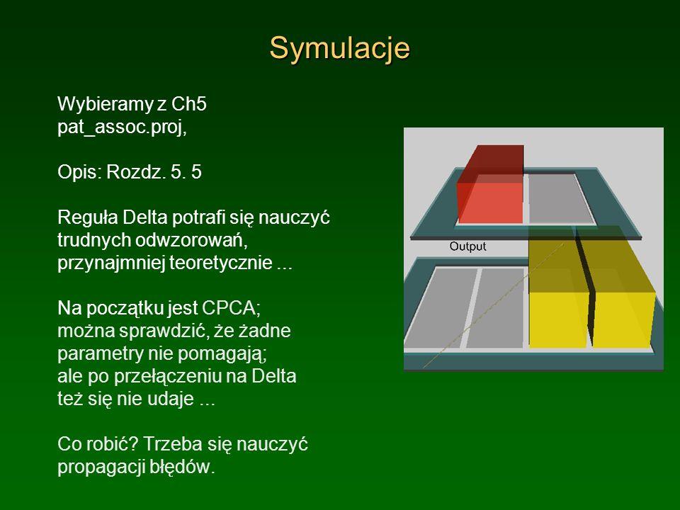 Symulacje Wybieramy z Ch5 pat_assoc.proj, Opis: Rozdz. 5. 5 Reguła Delta potrafi się nauczyć trudnych odwzorowań, przynajmniej teoretycznie... Na pocz