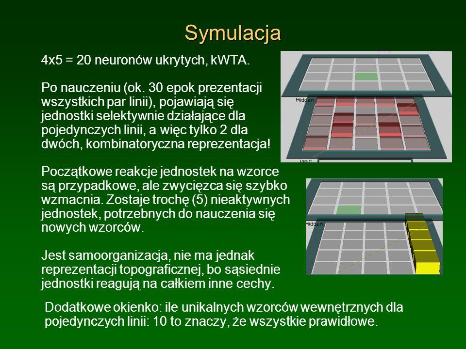 Symulacja 4x5 = 20 neuronów ukrytych, kWTA. Po nauczeniu (ok. 30 epok prezentacji wszystkich par linii), pojawiają się jednostki selektywnie działając