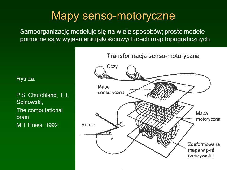 Mapy senso-motoryczne Samoorganizację modeluje się na wiele sposobów; proste modele pomocne są w wyjaśnieniu jakościowych cech map topograficznych. Ry