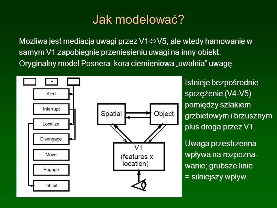 Jak modelować? Możliwa jest mediacja uwagi przez V1 V5, ale wtedy hamowanie w samym V1 zapobiegnie przeniesieniu uwagi na inny obiekt. Oryginalny mode