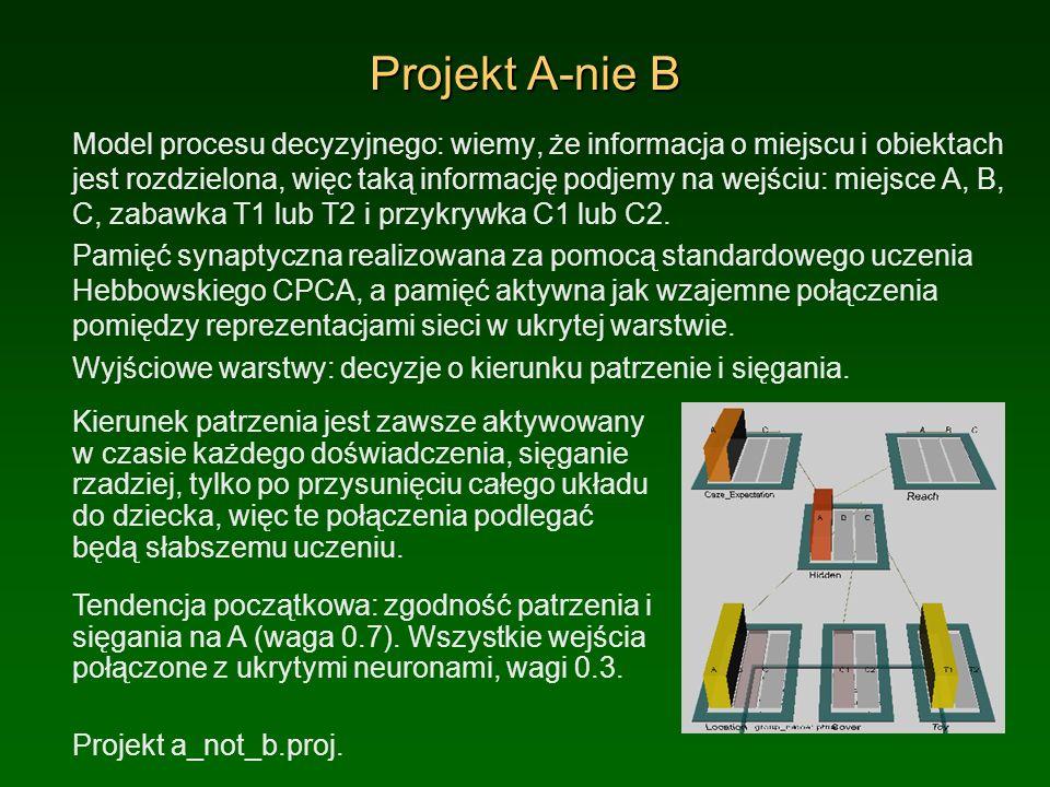 Projekt A-nie B Model procesu decyzyjnego: wiemy, że informacja o miejscu i obiektach jest rozdzielona, więc taką informację podjemy na wejściu: miejs
