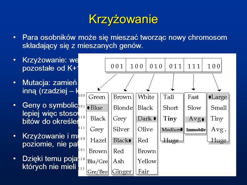 Krzyżowanie Para osobników może się mieszać tworząc nowy chromosom składający się z mieszanych genów. Krzyżowanie: weź K pierwszych genów z Chromosomu