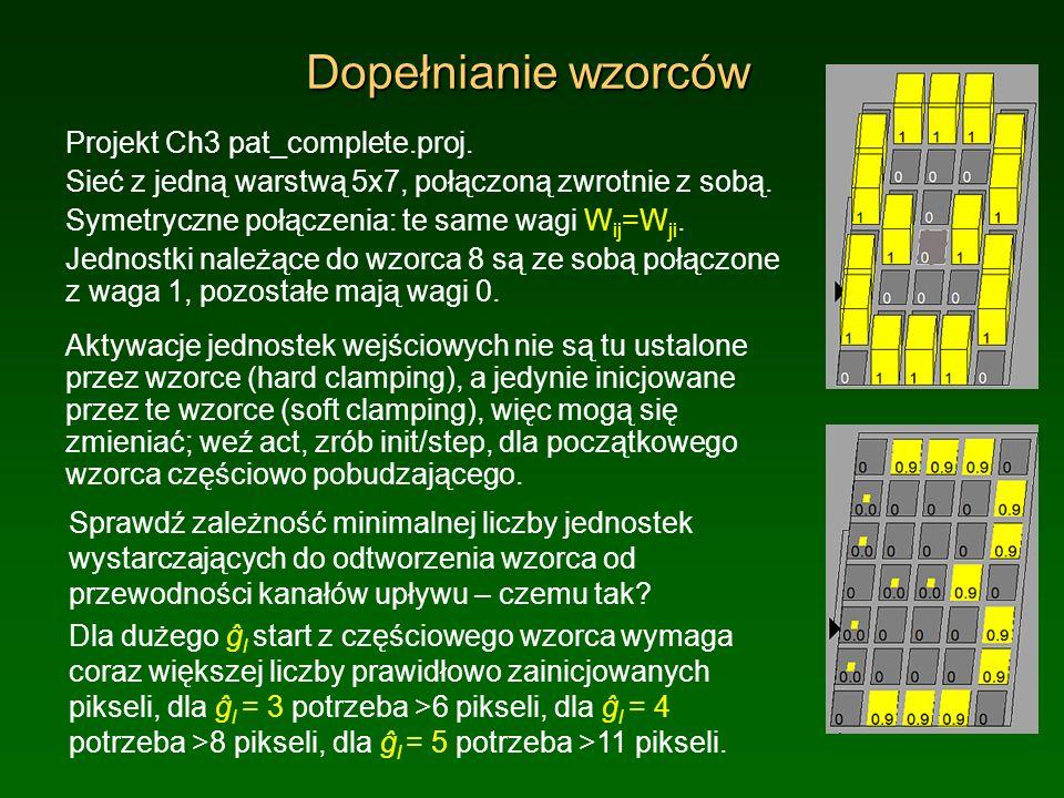 Wzmacnianie rekurencyjne Projekt Ch3 amp_top_down.proj.