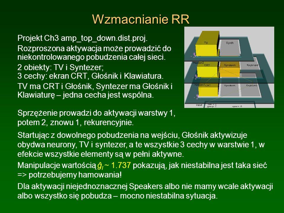 Wzmacnianie RR Projekt Ch3 amp_top_down.dist.proj. Rozproszona aktywacja może prowadzić do niekontrolowanego pobudzenia całej sieci. 2 obiekty: TV i S