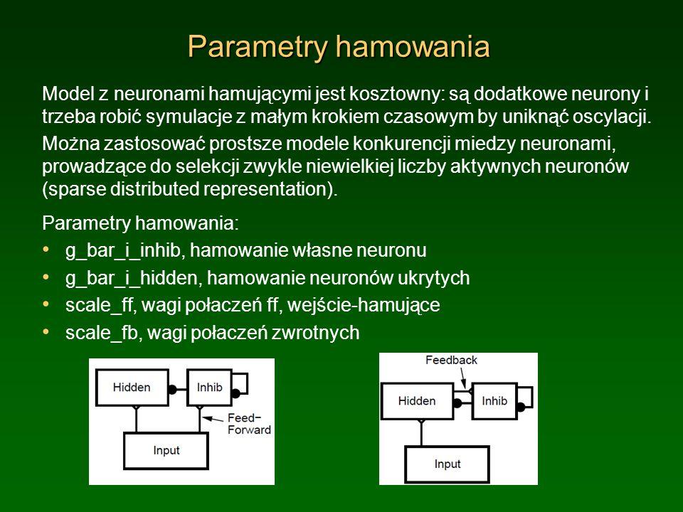 Parametry hamowania Model z neuronami hamującymi jest kosztowny: są dodatkowe neurony i trzeba robić symulacje z małym krokiem czasowym by uniknąć osc