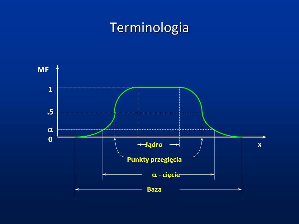 Terminologia MF X.5 1 0 Jądro Punkty przegięcia Baza - cięcie
