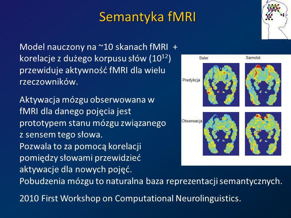 Semantyka fMRI Model nauczony na ~10 skanach fMRI + korelacje z dużego korpusu słów (10 12 ) przewiduje aktywność fMRI dla wielu rzeczowników. Aktywac