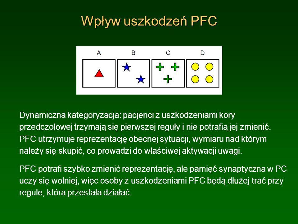 Wpływ uszkodzeń PFC Dynamiczna kategoryzacja: pacjenci z uszkodzeniami kory przedczołowej trzymają się pierwszej reguły i nie potrafią jej zmienić. PF