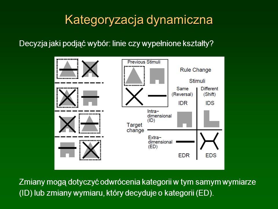 Kategoryzacja dynamiczna Decyzja jaki podjąć wybór: linie czy wypełnione kształty? Zmiany mogą dotyczyć odwrócenia kategorii w tym samym wymiarze (ID)