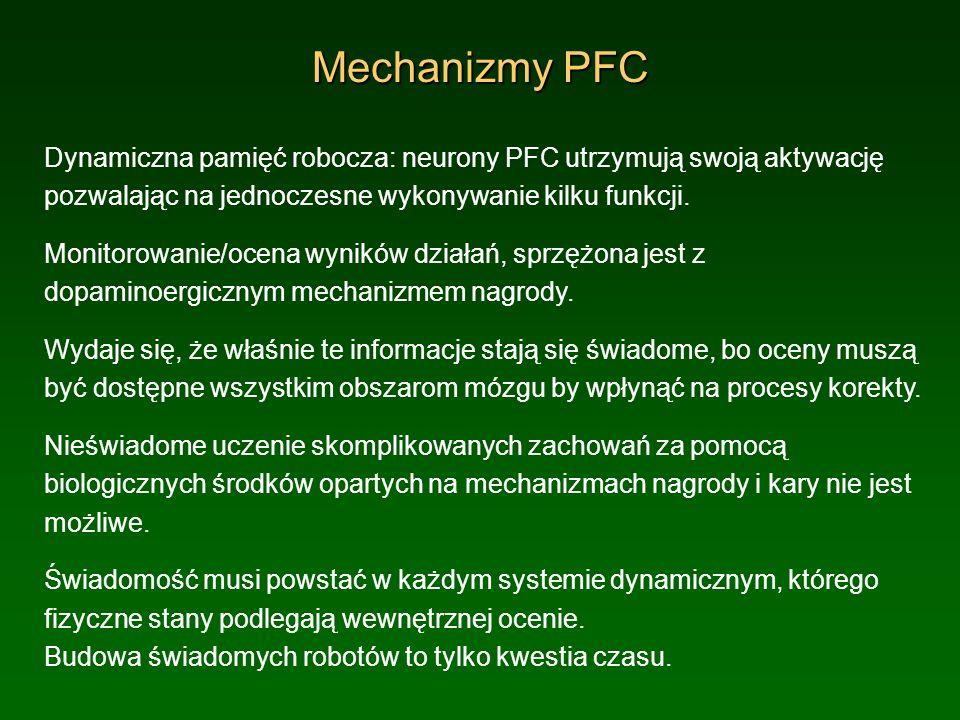 Mechanizmy PFC Dynamiczna pamięć robocza: neurony PFC utrzymują swoją aktywację pozwalając na jednoczesne wykonywanie kilku funkcji. Monitorowanie/oce