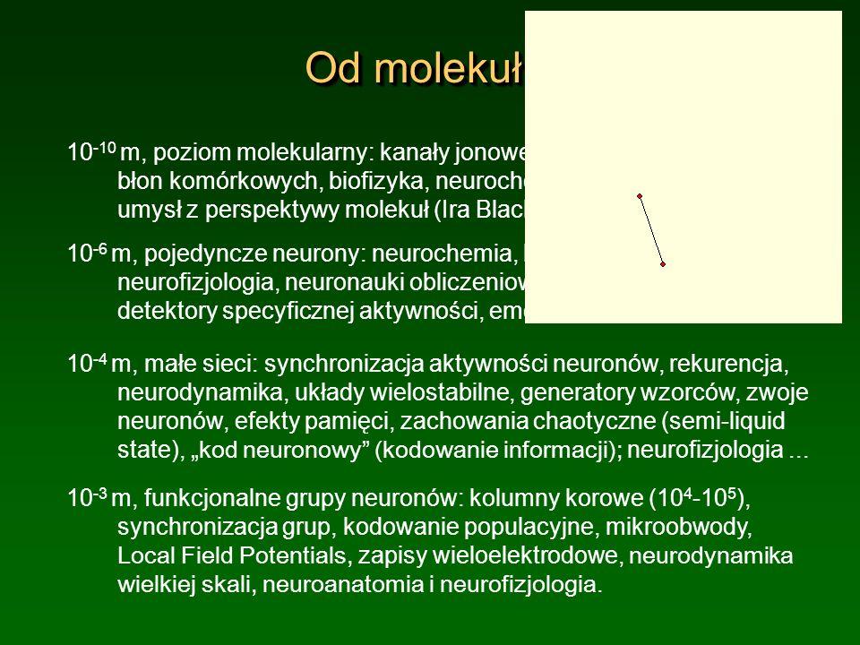 Od molekuł... 10 -10 m, poziom molekularny: kanały jonowe, synapsy, własności błon komórkowych, biofizyka, neurochemia, psychofarmakologia; umysł z pe
