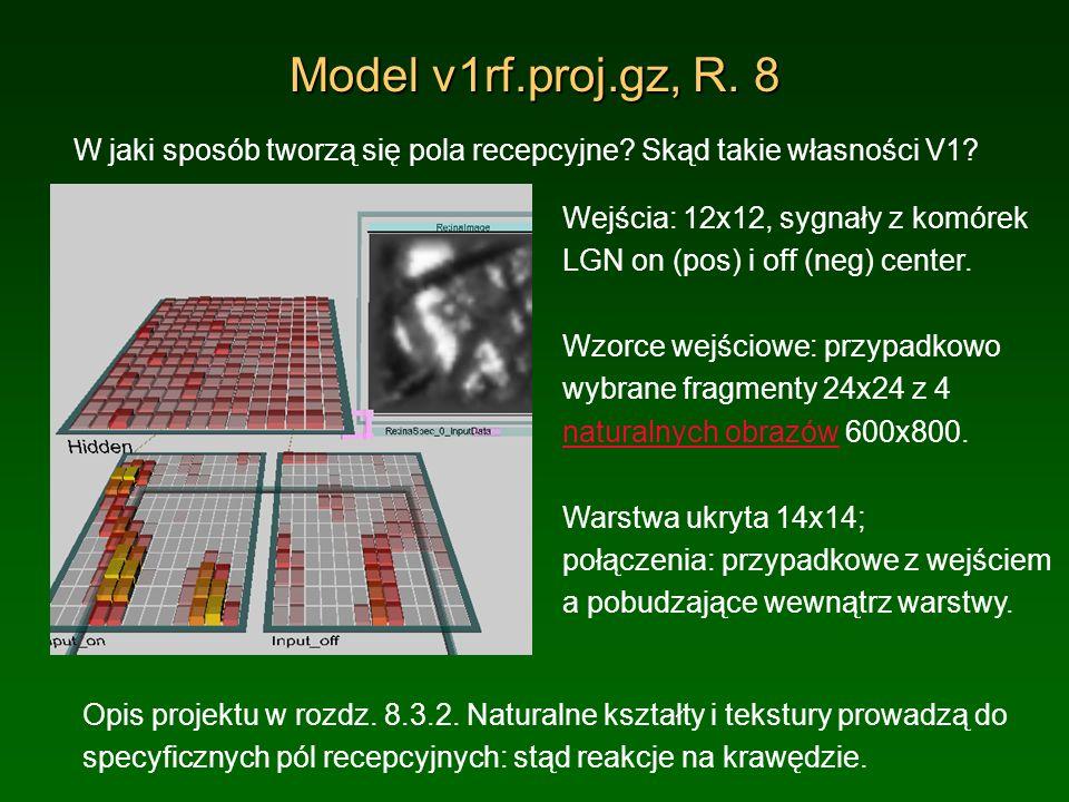 Model v1rf.proj.gz, R. 8 W jaki sposób tworzą się pola recepcyjne? Skąd takie własności V1? Opis projektu w rozdz. 8.3.2. Naturalne kształty i tekstur