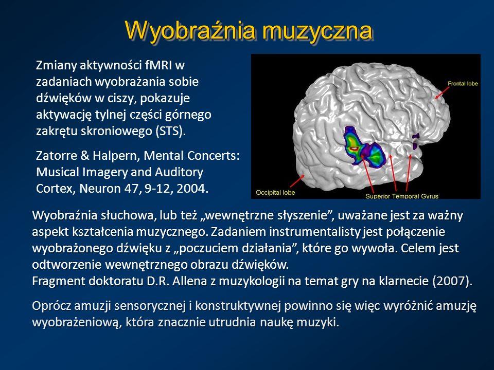 Wyobraźnia muzyczna Zmiany aktywności fMRI w zadaniach wyobrażania sobie dźwięków w ciszy, pokazuje aktywację tylnej części górnego zakrętu skronioweg
