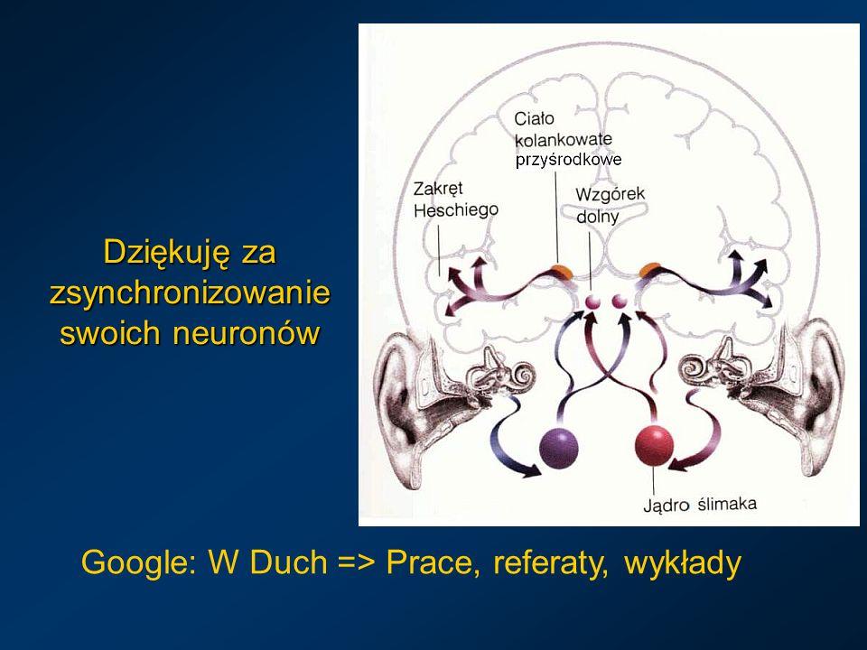 Dziękuję za zsynchronizowanie swoich neuronów Google: W Duch => Prace, referaty, wykłady