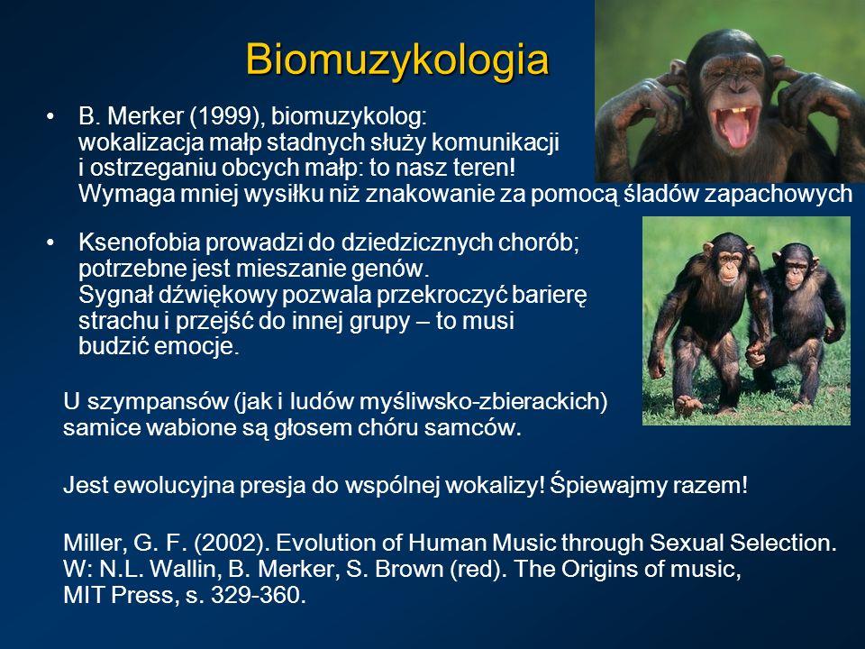 Biomuzykologia B. Merker (1999), biomuzykolog: wokalizacja małp stadnych służy komunikacji i ostrzeganiu obcych małp: to nasz teren! Wymaga mniej wysi