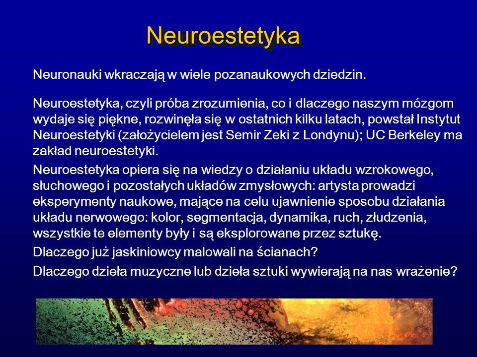 NeuroestetykaNeuroestetyka Neuronauki wkraczają w wiele pozanaukowych dziedzin. Neuroestetyka, czyli próba zrozumienia, co i dlaczego naszym mózgom wy