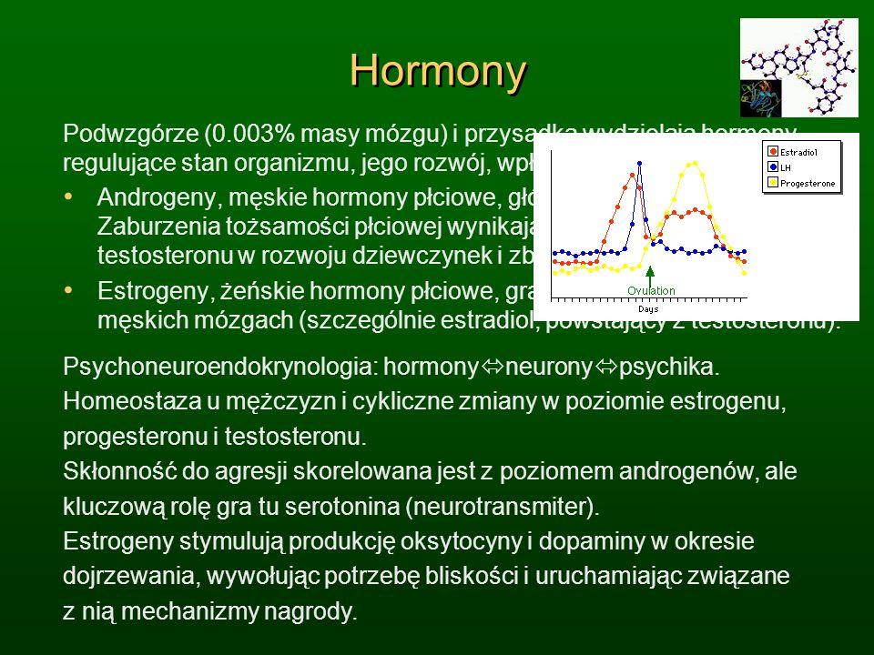 Hormony Podwzgórze (0.003% masy mózgu) i przysadka wydzielają hormony, regulujące stan organizmu, jego rozwój, wpływając na nastroje i emocje. Androge